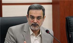 اخبار,اخبار اجتماعی,سید محمد بطحایی