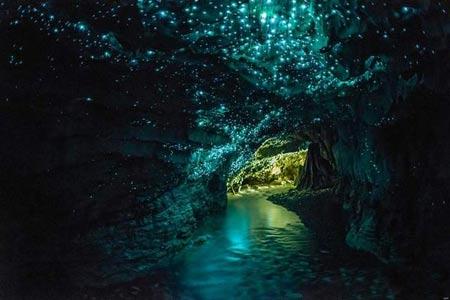 غار کرم های شب تاب,غار ویتومو در نیوزلند,کرم شب تاب