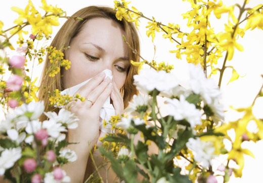 بخور نخورهای حساسیت بهاره