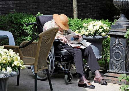 اخبار , اخبار گوناگون, دهکده ای برای بیماران مبتلا به زوال عقل,تصاویر دهکده بیماران مبتلا به زوال عقل