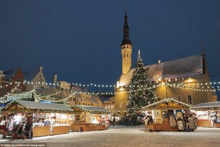 اخبار,اخبار فرهنگی,روشنایی شب در شهرهای مختلف,بازار کریسمس تالین در استونی