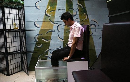 از پدیکور ماهی چه میدانید؟