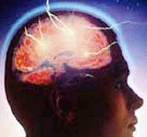 اخبار ,اخبار علمی ,تاثیر آب گرم بر سلامت مغز