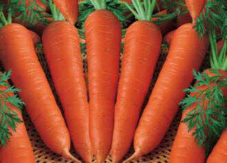 هویج حاوی ویتامینA