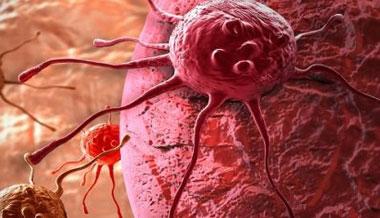 پیشگیری از سرطان, علل ابتلا به سرطان,مواد سرطان زا