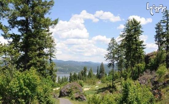 مناظر بی نظیر زمین های گلف در آمریکا