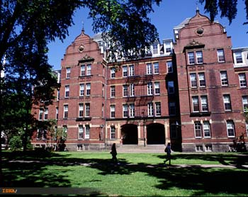 هاروارد, استنفورد