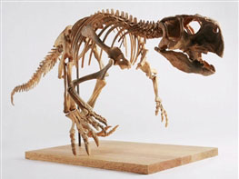 دایناسور,عکس دایناسور