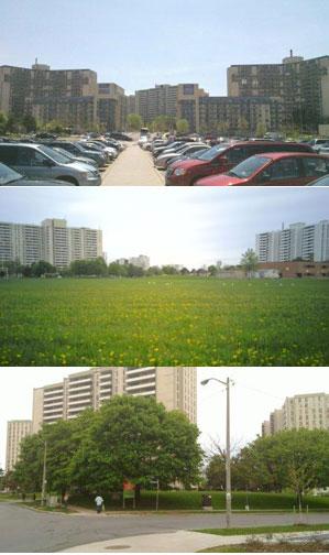 مقایسه ای معنی دار بین اجاره خانه در تهران و تورنتو