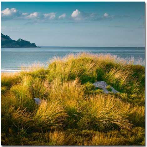 طبیعت زیبای نیوزلند