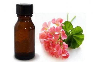 داروی شپش،گیاهان دارویی برای شپش سر