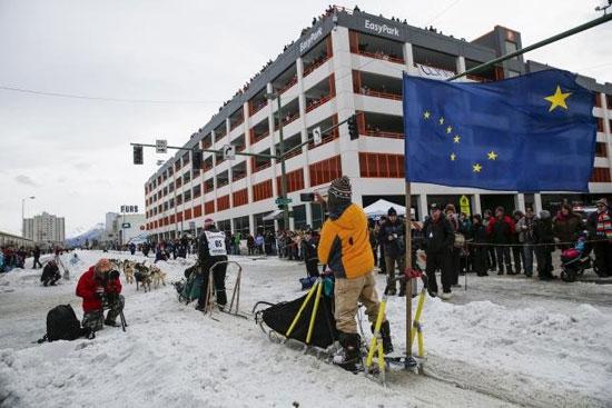 رقابت سگهای سورتمه کش در آلاسکا