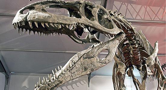 معروفترین دایناسورهای جهان: گیگاناتوساروس