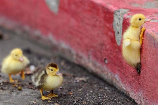 ۲۰ رفتار که باید از ثروتمندان یاد بگیریم