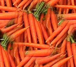 نگهداری هویج