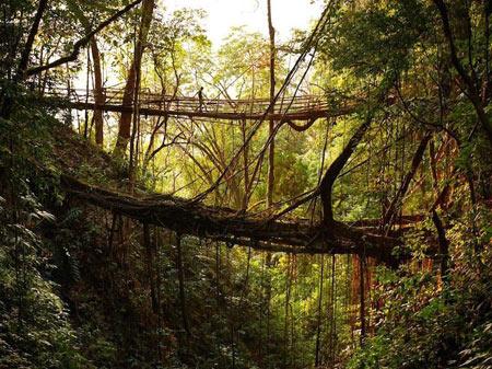 پل,عجیب ترین پل های جهان,عجایب طبیعت