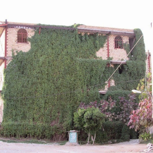 عجیب ترین خانه نیمه ساز در ایران/عکس