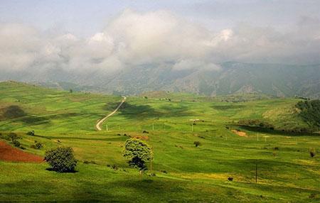 عکس های جنگل ارسباران,آذربایجان شرقی