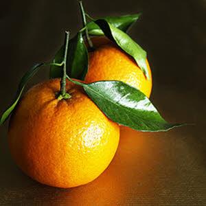 خواص داروئی پرتقال