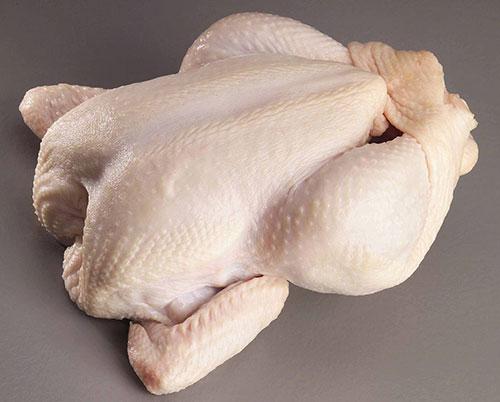 مرغ سالم چه ویژگیهایی دارد؟