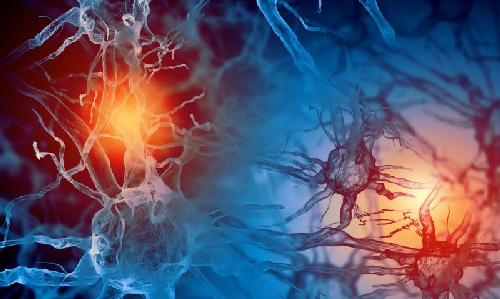 باورهای اشتباه در مورد مغز انسان