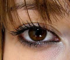 آرایشی زیبا مخصوص چشم های قهوه ای
