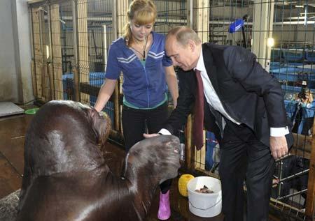 دست دادن پوتین با شیر دریایی در آکواریوم پریمورسکی روسیه