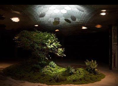 باغهای زیرزمینی,طراحی باغهای زیرزمینی