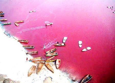 دریاچه صورتی,دریاچه رتبا,تصاویر دریاچه صورتی در آفریقا
