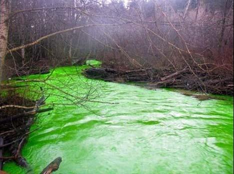 رودخانهای که ناگهان سبز شد