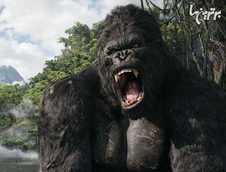 کینگ کونگ و گودزیلا؛ غول های سینمایی رو در روی هم