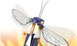 اخبار,اخبار علمی,زنبورهای رباتیک پرنده و شناگر