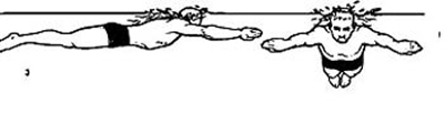 شنای قورباغه,آموزش شنای قورباغه,آموزش انواع شنا