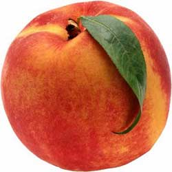 هلو میوه ی زیبایی