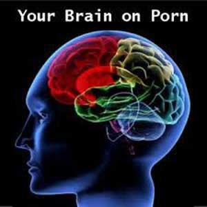 اخبار ,اخبار علمی ,تاثیر تماشای فیلم مستهجن بر مغز