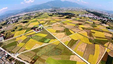 عکسهای جالب,تصاویر دیدنی,زمین های کشاورزی