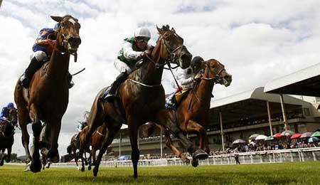 عکسهای جذاب,تصاویر جالب,مسابقات اسب سواری