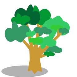 شخصیت شناسی با درختان