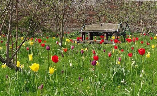 تصاویر: زیباترین باغ های بریتانیا