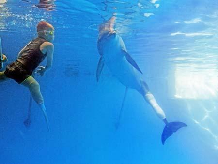 شنای نوجوان بدون پای بریتانیایی با دلفین معلول