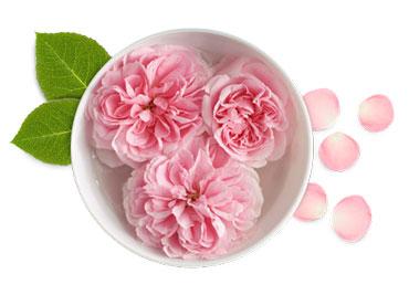 فواید گلاب, گلاب خالص